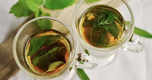 zayıflamak için çay